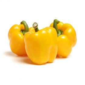 Capsicum Yellow