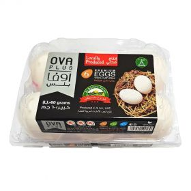 Ova Plus Eggs Large Pack of 6