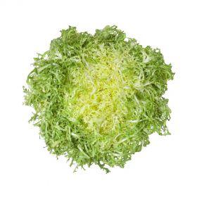 Lettuce Frisee Yellow