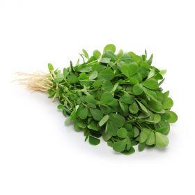 Methi Leaves (Fenugreek)