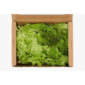 Must Have Salad Mix - Madar Farms