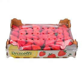 Strawberry Driscoll's