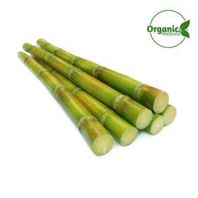 Sugarcane Organic