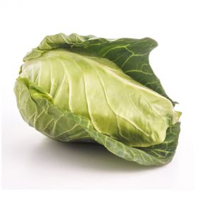 Cabbage Spring