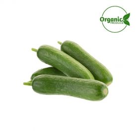 Cucumber Baby Organic
