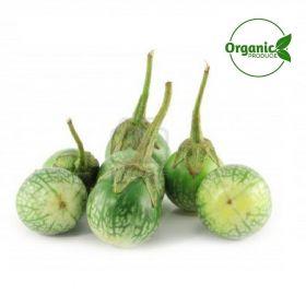 Eggplant Green Thai Organic