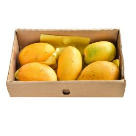 Mango Egypt 4 Kg Box
