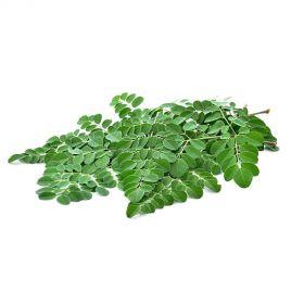 Drumstick Leaves (Moringa Leaves)