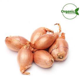 Onion Shallots Organic