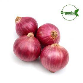 Onion Red Organic