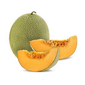 Rock Melon/Cantaloupe Melon