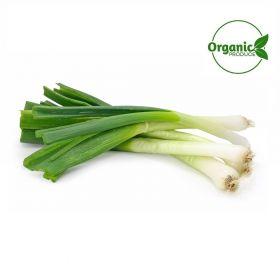 Spring Onion Organic