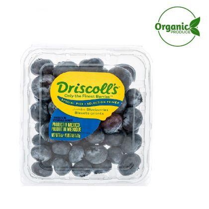 Blueberry Organic -Driscoll's