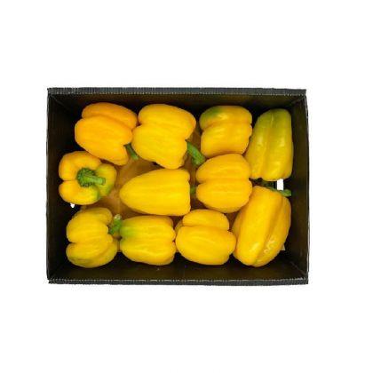 Capsicum Yellow Box