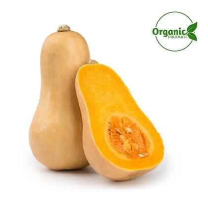 Pumpkin Butternut Organic