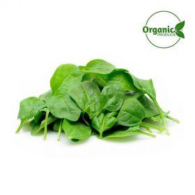 Baby Spinach Organic