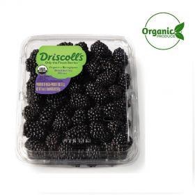 Blackberry Organic