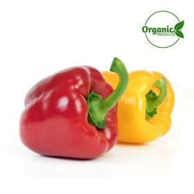 Capsicum Mix Organic (Red/Yellow)