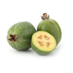 Pineapple Guava (Feijoa)