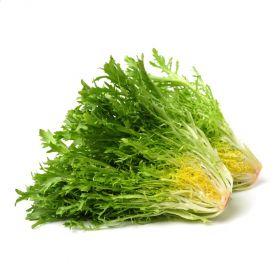 Lettuce Frisee Green