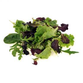 Lettuce Mesclun Mix