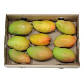 Mango Long Box