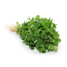 Fenugreek (Methi Leaves) Premium