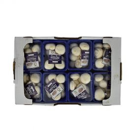 Mushroom Button White