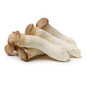 Mushroom Eyringi