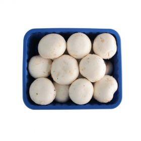 Mushroom Button (Best Price)