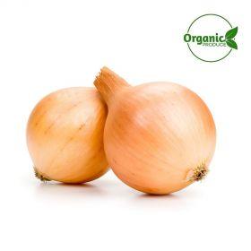 Onion Brown Organic