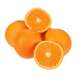 Orange Valencia (Best Price)