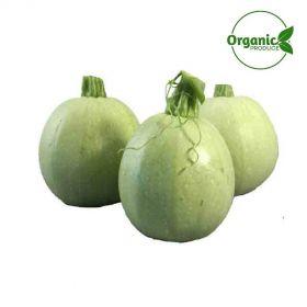 Zucchini White Round Organic
