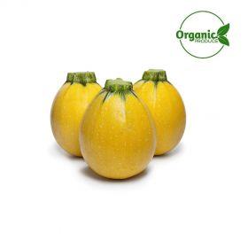 Zucchini Yellow Round Organic